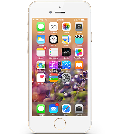 iPhone 6 Plus 64GB - LL